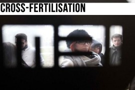 Cross-fertilisation: la terza cultura. Incontro con Stefano Coletto