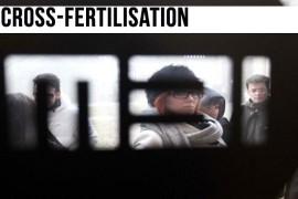 Cross-fertilisation: la terza cultura. Incontro con Stefano Coletto