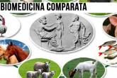 Dipartimento di Biomedicina comparata e alimentazione dell'Università di Padova