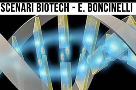 Boncinelli