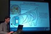 SMA - Leghe a memoria di forma come tecnologie di applicazione per la biorobotica - Maurizio Follador