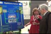 Alga&Zyme Factory: microalghe tuttofare