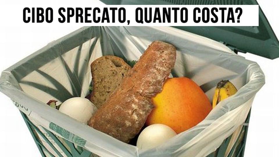 Quanta energia buttiamo nella spazzatura insieme al cibo sprecato? Lo studio