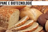 Biotecnologie per migliorare la qualità e la conservazione del pane