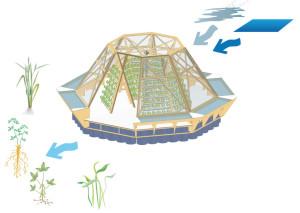 serra galleggiante Jellyfish barge2