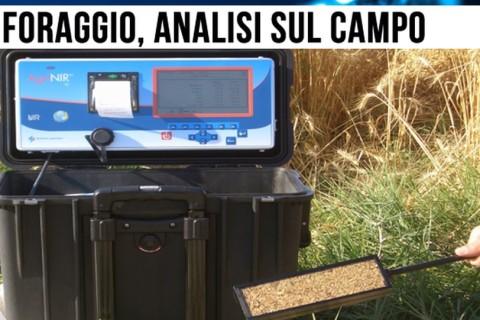 Il dispositivo portatile che analizza in tempo reale il foraggio del bestiame