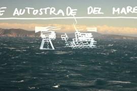 Autostrade del mare e i Cetacei