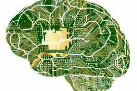 immagine del cervello interconnesso