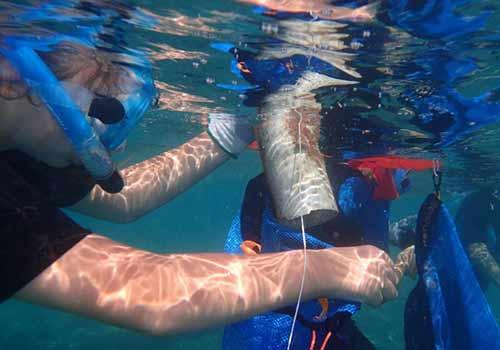 Attività di raccolta di rifiuti plastici in mare