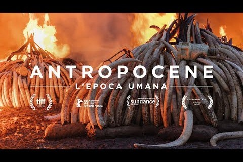 ANTROPOCENE - L'epoca umana - Trailer Italiano Ufficiale | HD