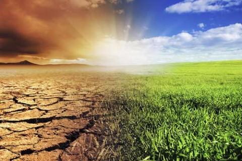 climate_change_triwu